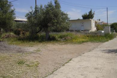 ΝΕΑ ΠΕΡΑΜΟΣ, Αγροτεμάχιο, Πώληση, 255 τ.μ